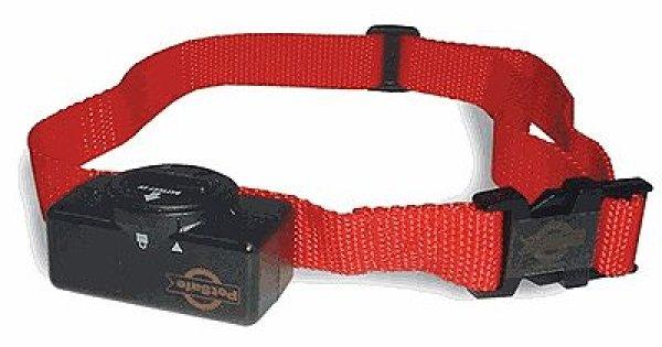 画像1: 自動で電流レベル調整 安心して使える愛犬トレーニング首輪 (1)